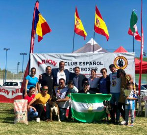 Resultados oficiales del Campeonato del Año del Boxer Club España 2019